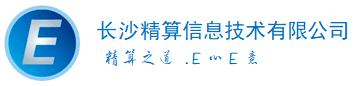 长沙精算信息技术有限公司 logo